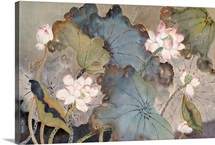 Lotus Pond