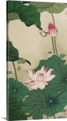 Two Butterflies and Lotuses