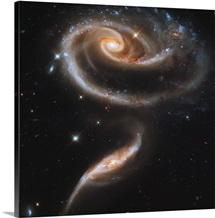 A Rose Made of Galaxies Highlights Hubble's 21st Anniversary