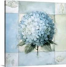 Blue Hydrangea Study II