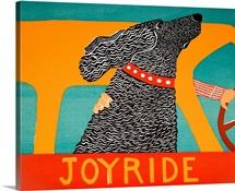 Joyride Black