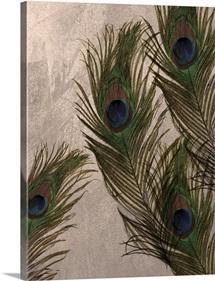 Peacock Feathers I