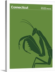State Posters - Connecticut State Insect: European Mantis