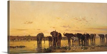 African Elephants (oil on canvas)