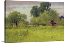 Apple Orchard, 1892