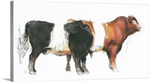 Belties, 2006 (charcoal