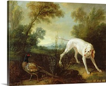 Blanche, Bitch of the Royal Hunting Pack (oil on canvas)