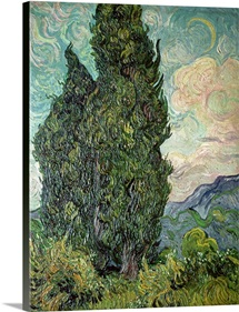 Cypresses, 1889 (oil on canvas)