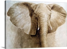 Elephant, 2004 (acrylic on paper)