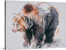 European Brown Bear, 2001 (charcoal