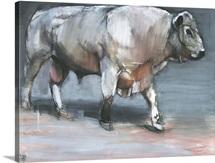 Fresno, Galloway Bull (mixed media on paper)