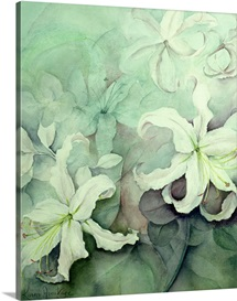 Lilies, white Auratum