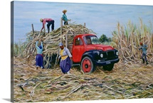 Loading Canes (oil on canvas)