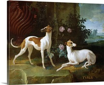 Misse and Turlu, two greyhounds of Louis XV (oil on canvas)