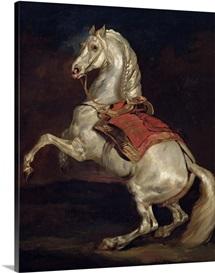 Napoleon's Stallion, Tamerlan (oil on canvas)