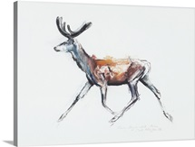 Running Stag in velvet, Polsen, 2006 (charcoal