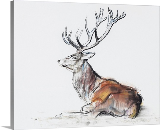 Seated Stag, 2006 (charcoal 