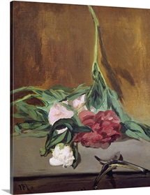 Stem of Peonies and Secateurs, c.1864 (oil on canvas)