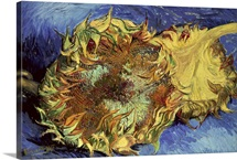Sunflowers, 1887