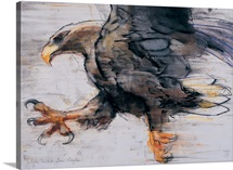 Talons - White tailed Sea Eagle, 2001 (charcoal