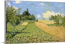 The Cornfield (near Argenteuil) (oil on canvas)