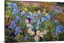 The Iris Bed, 1993