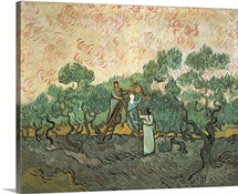The Olive Pickers, Saint-Remy, 1889