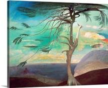 The Solitary Cedar, 1907 (oil on canvas)