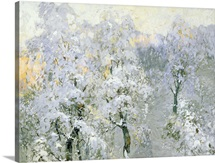 Trees in Wintry Silver, 1910 (oil on canvas)