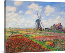 Tulip Fields with the Rijnsburg Windmill, 1886 (oil on canvas)