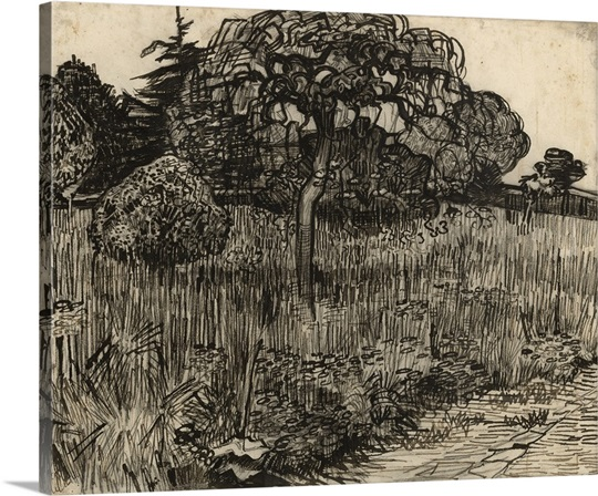 Weeping Tree, 1889