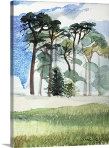 Wiltshire Pines, 1989 (w/c on paper)