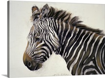 Zebra, 2002 (charcoal