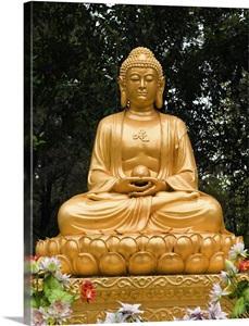 tierp buddhist singles If you're actively seeking a buddhist woman to settle down with, then these buddhist chat rooms can offer you the chance of a life time.