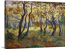 The Clearing By Paul Ranson