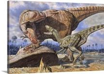 Carcharodontosaurus guards its kill against Deltadromeus