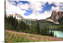 British Columbia, Yoho National Park, View of Emerald Lake and surrounding wilderness
