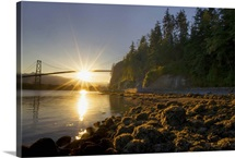 Sun rising behind Lions Gate Bridge, Stanley Park, British Columbia
