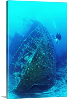 Egypt, North Africa, Red Sea, Wreckage