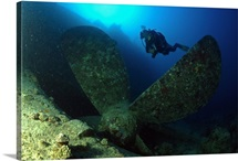 Egypt, North Africa, Red Sea, Wreckage of a cargo, propeller