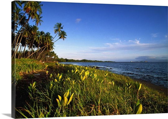 kaunakakai chat Discover the top things to do in molokai  so stop for a stroll in the saturday market in kaunakakai, chit chat with the locals at the beach,.