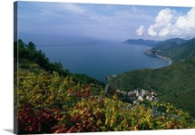 Italy, Liguria, Panoramic view from the hills behind Manarola, Riomaggiore