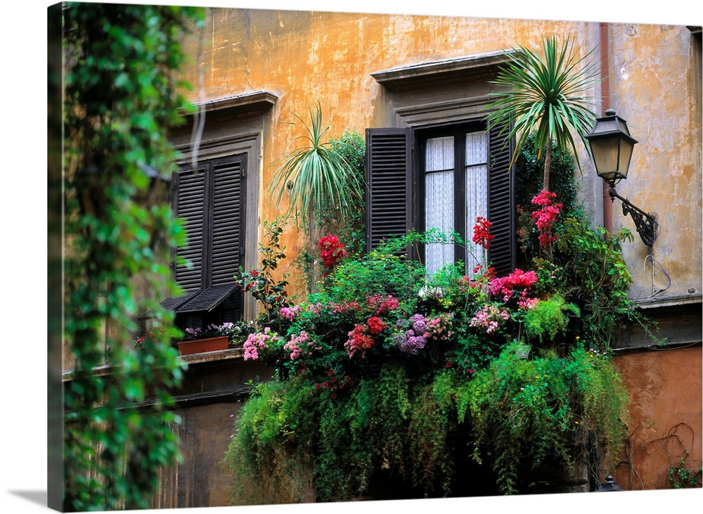 Italy, Rome, Historical Center, typical window with flowers