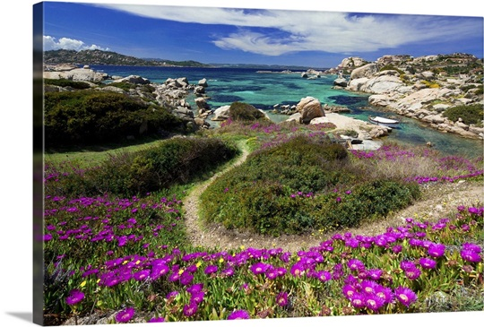 la maddalena gay singles Answer 1 of 6: can anyone recommend a great hotel that is gay friendly with a  beach and pools,  boat tours la maddalena archipelago.