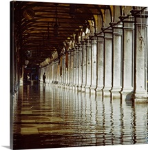 Italy, Venice, Porch of Procuratie Vecchie, reflection