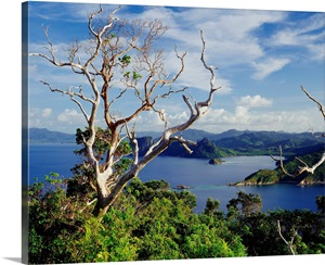 singles over 50 in el nido Spend the night on a deserted island with the overnight camping in el nido camp for 1 night or up to 3 nights with the overnight camping safari tours.