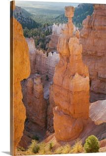 Utah, Bryce Canyon National Park, Sunrise at Thor's Hammer