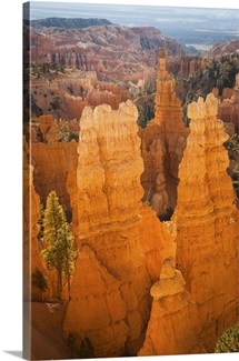 Utah, Bryce Canyon National Park, Thor's Hammer at sunrise