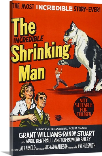 The Incredible Shrinking Man - Vintage Movie Poster ...