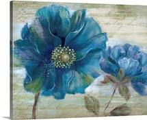 Blue Poppy Poem I